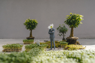 Businessman figurine with flower head standing park - FLAF00050