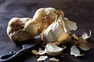 Smoked garlic on rusty ground - CSF28679