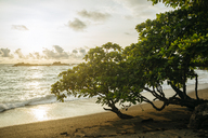 Costa Rica, Corcovado beach at sunset - KIJF01889