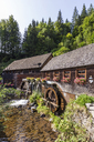 Germany, Baden-Wurttemberg, Black Forest, Hexenloch water mill - WDF04250