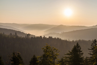 Germany, Baden-Wurttemberg, Black Forest, View from Schliffkopf mountain at sunrise - WDF04286