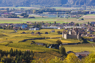 Switzerland, Canton Vaud, Aigle, vineyards and Aigle Castle - WDF04302