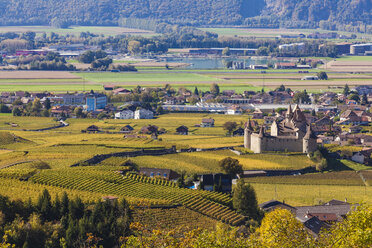 Switzerland, Canton Vaud, Aigle, vineyards and Aigle Castle - WDF04302