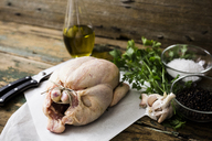 Uncooked chicken with parsil and garlic, olive oil, pepper and salt - GIOF03728
