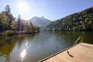 Germany, Bavaria, Allgaeu, Schwansee near Schwangau - SIEF07659