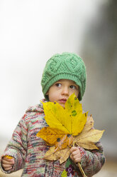 Portrait of little girl with autumn leaves - WWF04140
