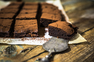 Homemade brownies - GIOF03747