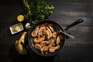 Argentine red shrimps in pan - MAEF12487