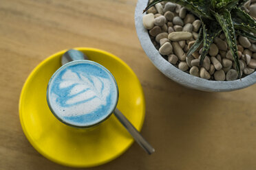 Blue smurf latte with spirulina algea - SBOF01215