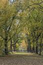 USA, New York City, Manhattan, Central Park - RPSF00166