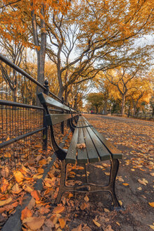 USA, New York City, Manhattan, Central Park in autumn - RPSF00169