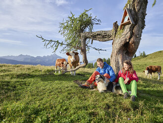 Austria, Tyrol, Mieming Plateau, hikers with dog having a break on alpine meadow with cows - CVF00056