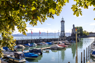 Germany, Lindau, Lake Constance, moored boats in harbor - PUF01101