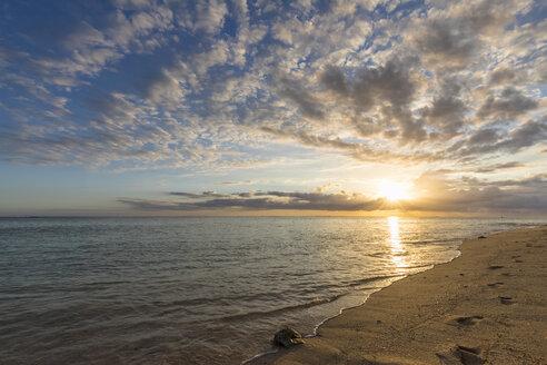Mauritius, Southwest Coast, Indian Ocean, Le Morne, beach at sunset - FOF09764
