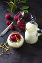 Glass of pudding with vanilla sauce and raspberry sauce garnished with raspberry and orange zest - CSF28750