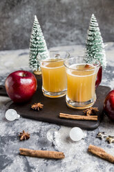 Apple punch, apple, cinnamon, star anise - SARF03490