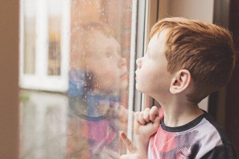 Boy looking at the rain on windowpane - NMS00194