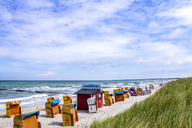 Germany, Mecklenburg-Western Pomerania, Ahrenshoop, - PUF01133