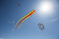 Octopus-shaped and other kites in the sky - JATF01013