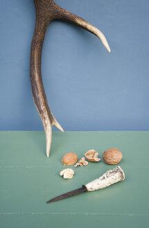 Deer antler, hunting knive, walnut - GISF00298