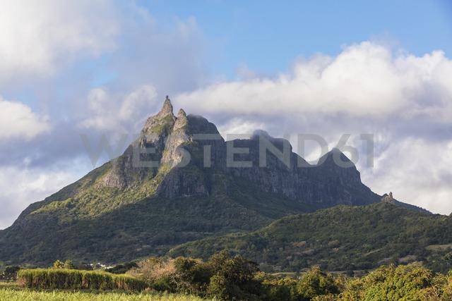 Mauritius, Highlands, sugarcane fields, Mountain Pieter Both - FOF09807
