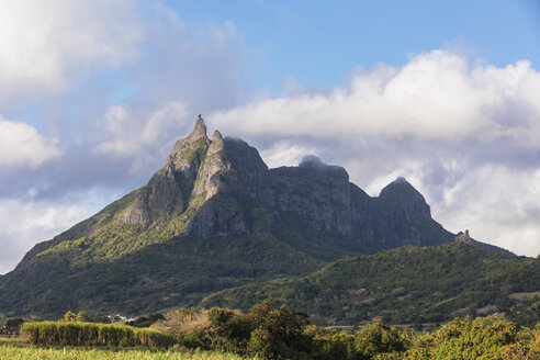 Mauritius, Highlands, sugarcane fields, Mountain Pieter Both - FOF09807