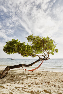 Thailand, Phi Phi Islands, Ko Phi Phi, hammock in a tree on the beach - RORF01114
