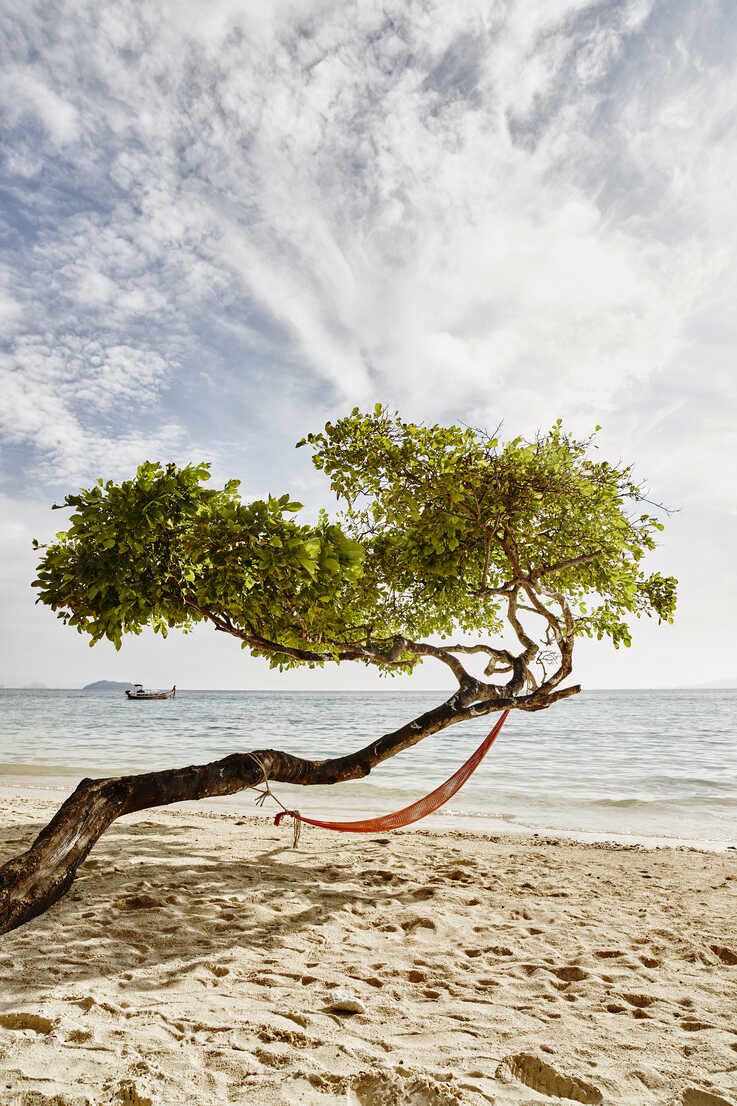 Thailand, Phi Phi Islands, Ko Phi Phi, hammock in a tree on the beach - RORF01114 - Roger Richter/Westend61