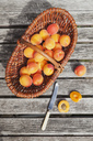 Wickerbasket of apricots - GWF05397