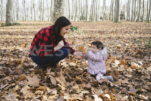 Mother and baby girl playing with autumn leaves leaves in park - GEMF01852