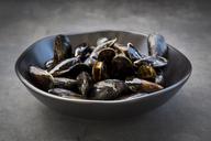 Organic blue mussels - LVF06616