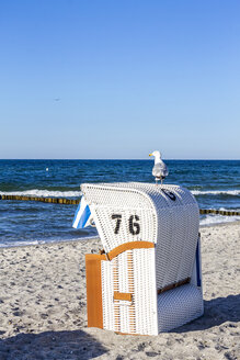 Germany, Mecklenburg-Western Pomerania, Baltic sea seaside resort Kuehlungsborn, hooded beach chair and seagull - PUF01217