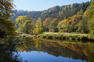 Germany, Bavaria, Lower Bavaria, Bavarian Forest, Nature reserve Obere Ilz, Ilz river in autumn - SIEF07691