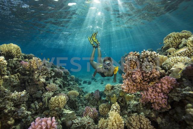 Egypt, Red Sea, Hurghada, teenage girl snorkeling at coral reef - YRF00190
