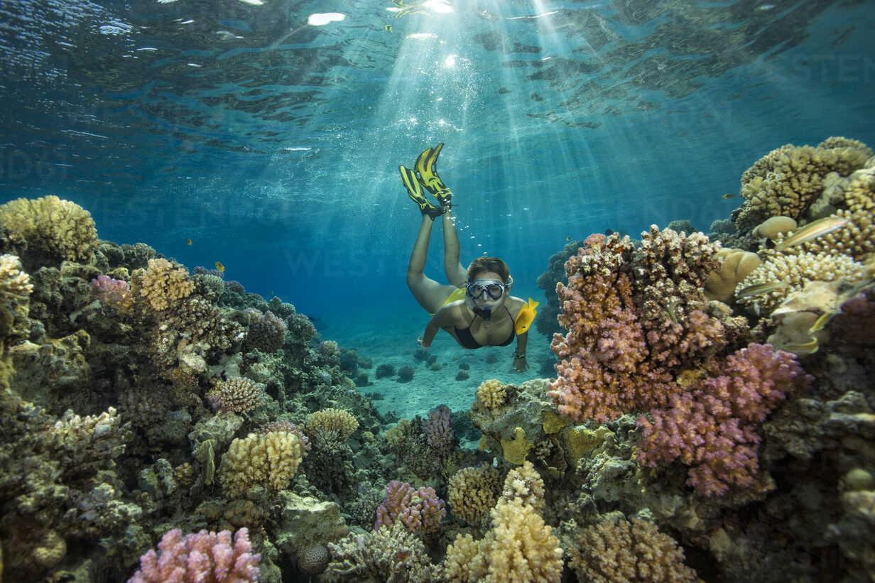 Egypt, Red Sea, Hurghada, teenage girl snorkeling at coral reef - YRF00190 - Herbert Meyrl/Westend61