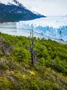 Argentina, El Calafate, Patagonia, Glacier Perito Moreno - AMF05637