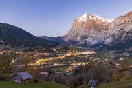 Switzerland, Bern, Bernese Oberland, holiday resort Grindelwald, Wetterhorn in the evening - WDF04407