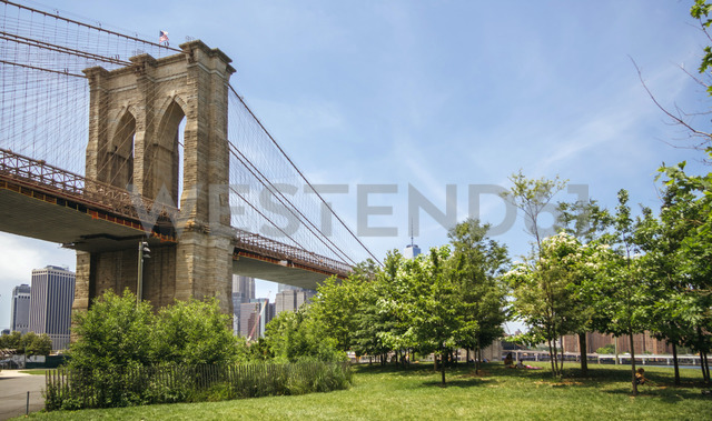 USA, New York, Brooklyn, View of Brooklyn Bridgre from Brooklyn Bridge Park - DAPF00872