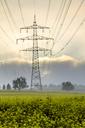 Germany, Hesse, Taunus, power transmission line - PUF01296