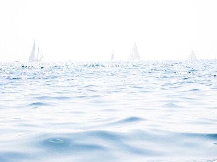 Italy, Liguria, Imperia, sailing boats - NEKF00010