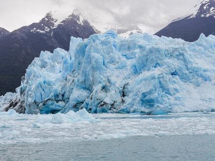 Argentina, El Calafate, Region Patagonia, Glacier Perito Moreno - AMF05644