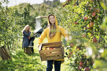 Two women harvesting apples in orchard - PESF00964