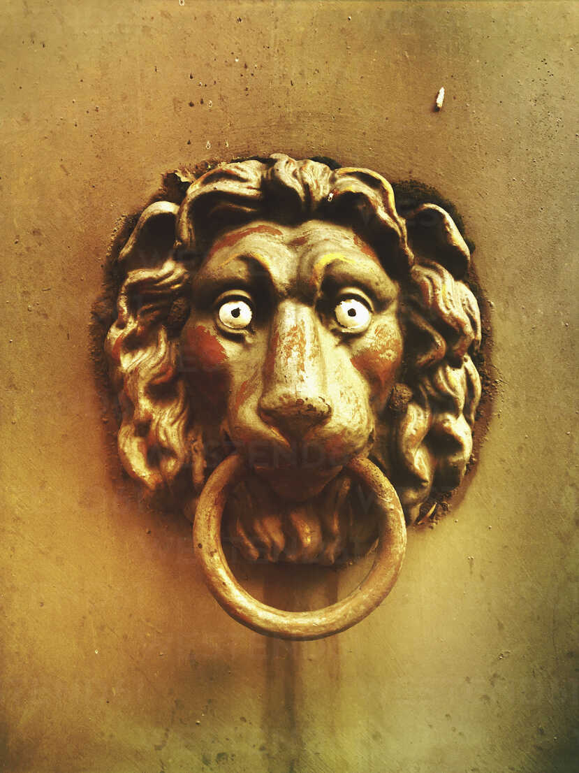 Lion Head Doorknocker Gwf05426 Gaby Wojciech Westend61
