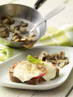 Mozzarella bread and champignons on plate - SRSF00621