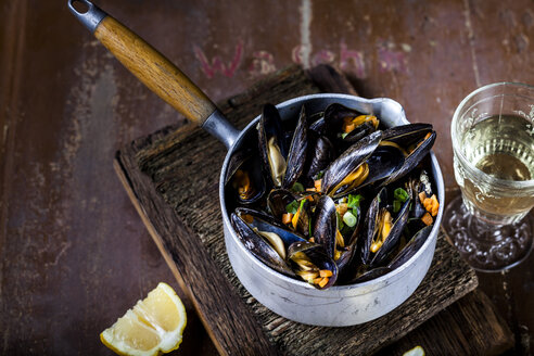 Blue mussels in cooking pot - SBDF03457