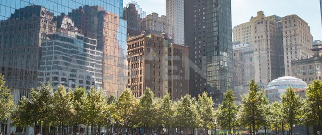 USA, New York City, skyscrapers around 9/11 Memorial - SEEF00007