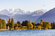 Switzerland, Canton of Bern, Thun, river Aare and alpine panorama - WDF04432