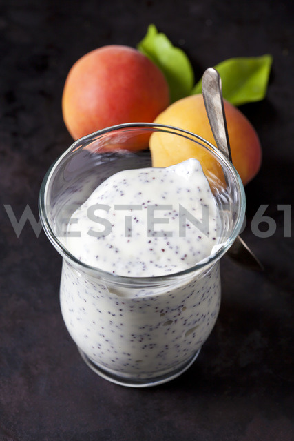 Glass of natural yoghurt with poppy seed - CSF28906