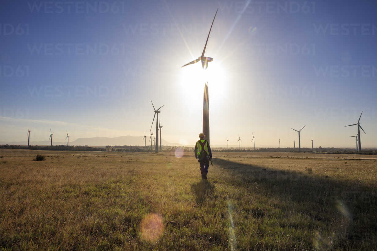 Engineer walking on a wind farm at sunset - ZEF14977 - zerocreatives/Westend61
