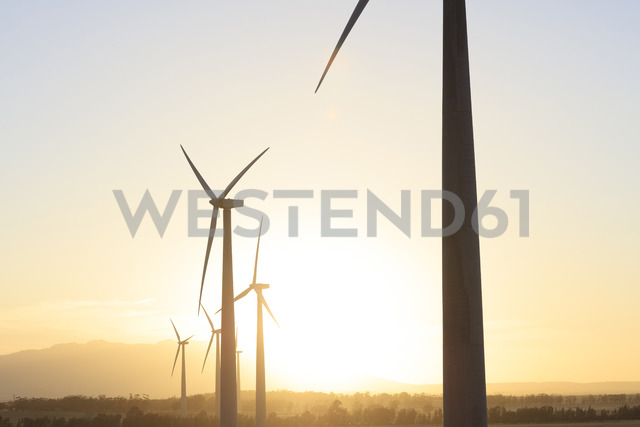 Wind farm at sunset - ZEF14989